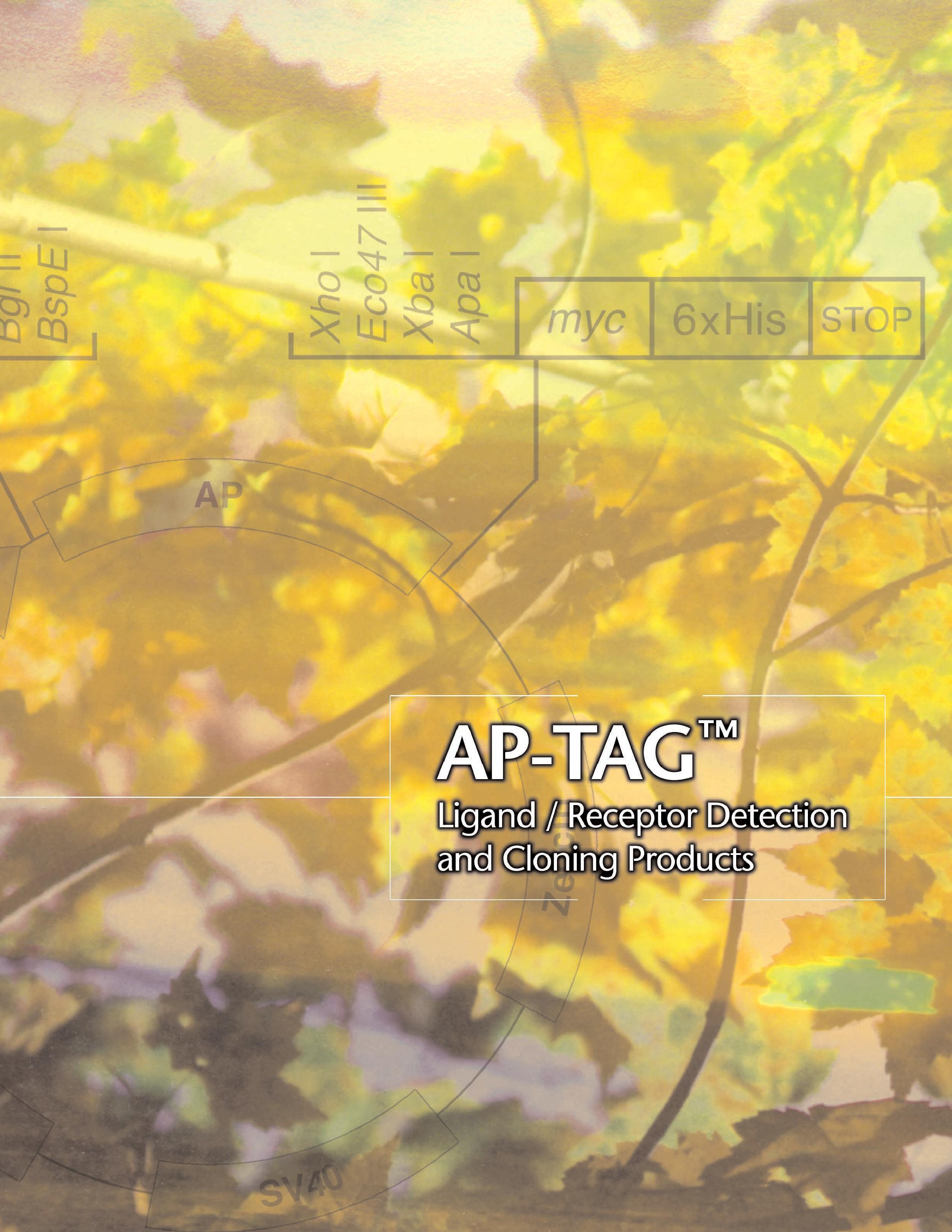 ap-tagbrochure-pdf.jpg